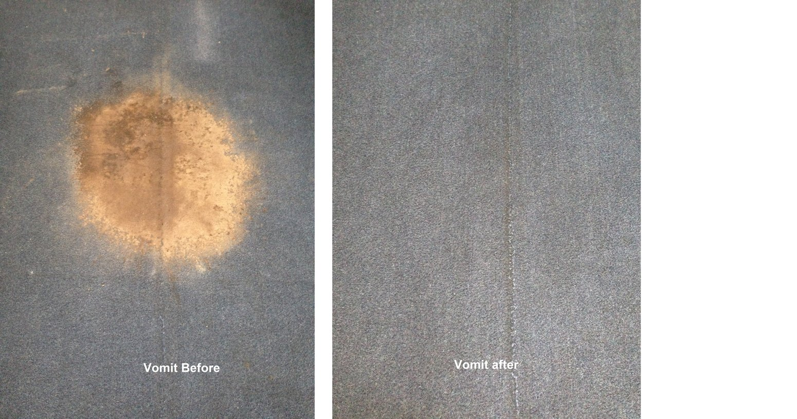 North Shore carpet cleaning service